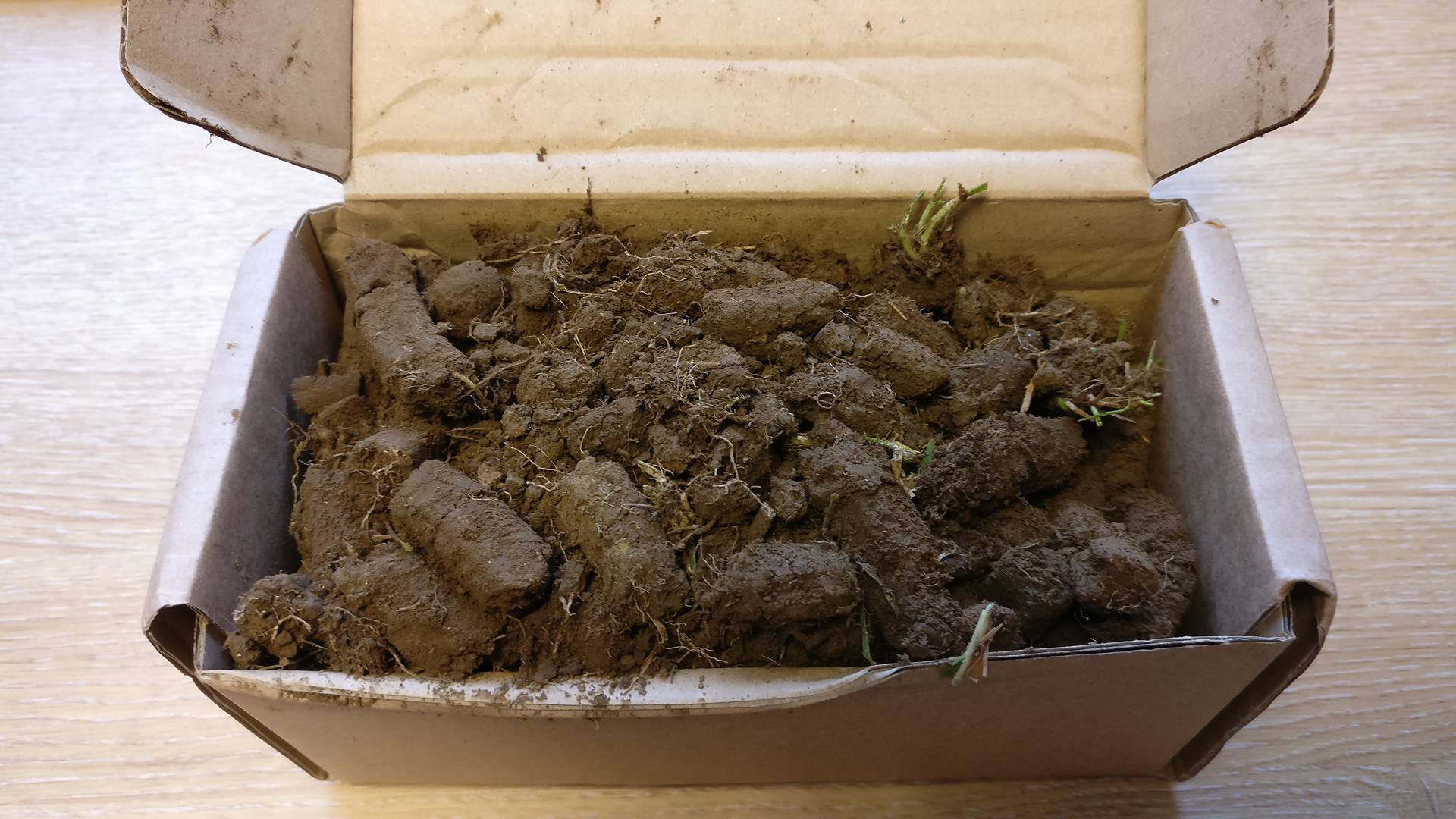 Example of Full Soil Sample