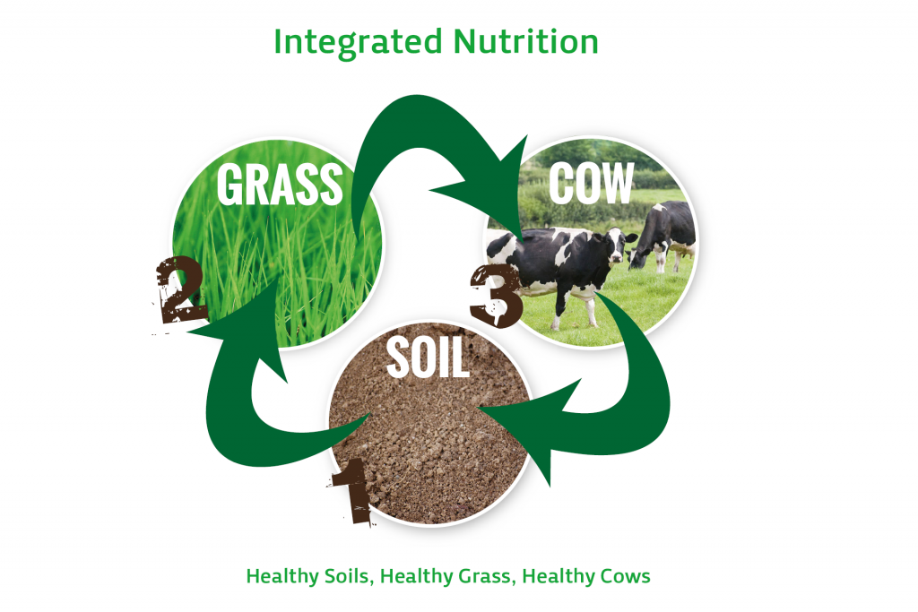 Integrated Nutrition Picture